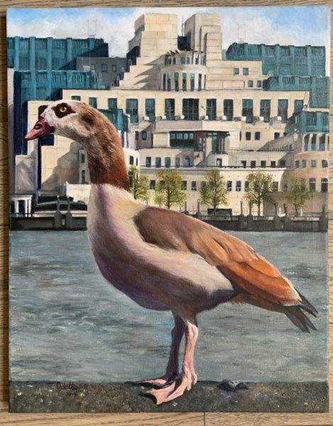 An Egyptian Goose in London, Odette Lavansch, #194: oil on canvas, 40x50cm