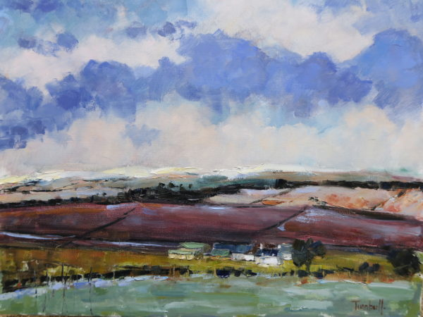 Borders Farm, Winter, Nancy Turnbull, #354: oil on canvas, 40x50cm