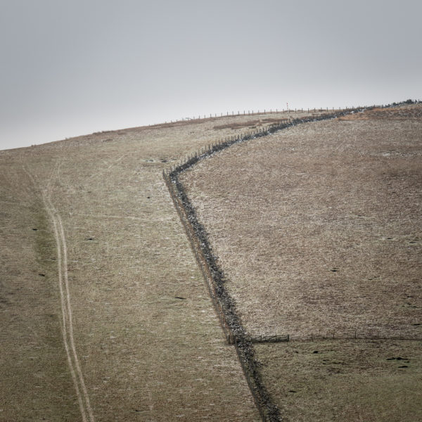Field Lines 1, Euan Ross, #315:  photography, 18x18cm, unframed, 1of15