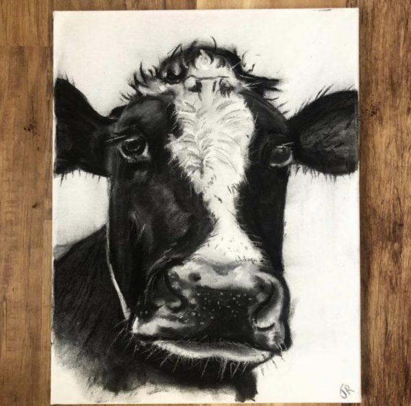 Dairy Cow, Jamie Retson, #306:  charcoal, chalk, 35x45cm