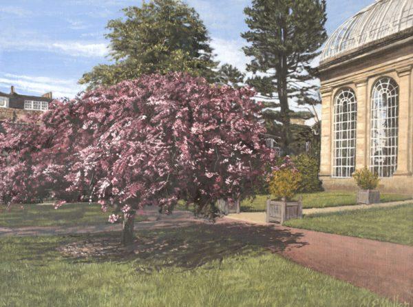 Spring Blossom, Michael Mullen, #263: Edinburgh Botanic Gardens, oil on linen board, 30x40cm, framed, antique white, wooden frame, frame dimensions, 50x60cm