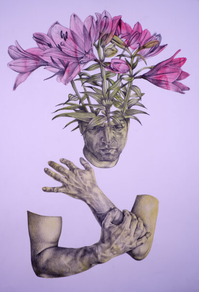 Lily Head, Mark Mulholland, Graphite over a coloured wash on paper Framed 70cm x 54cm x 2cm