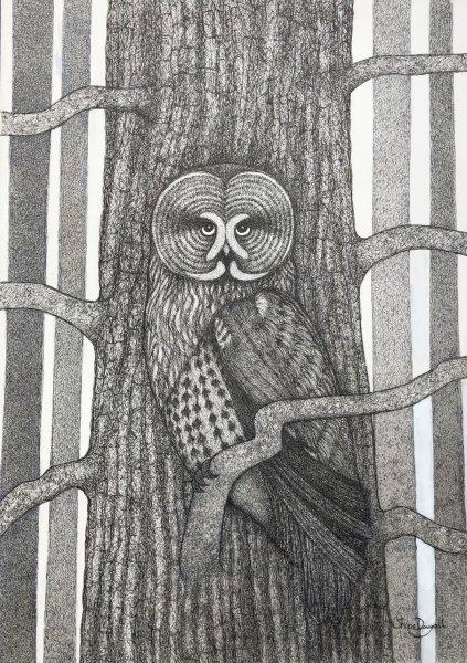 Nature's Camouflage (The Great Grey Owl)